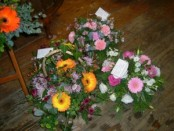 Rainbow coloured posies
