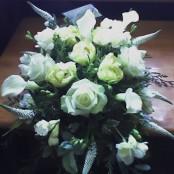 White Elegant